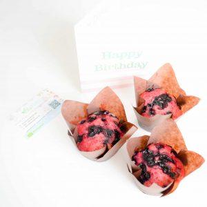 Organic & Vegan Blueberry Muffins online bestellen en makkelijk per post versturen! Deze heerlijke muffins zijn biologisch, veganistisch, suikervrij, moist en makkelijk online te bestellen! Nu met gratis persoonlijk boodschap!